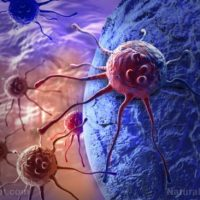 The Immortal Cell Lines: Contagious Cancer and the Modern Zombie Genre